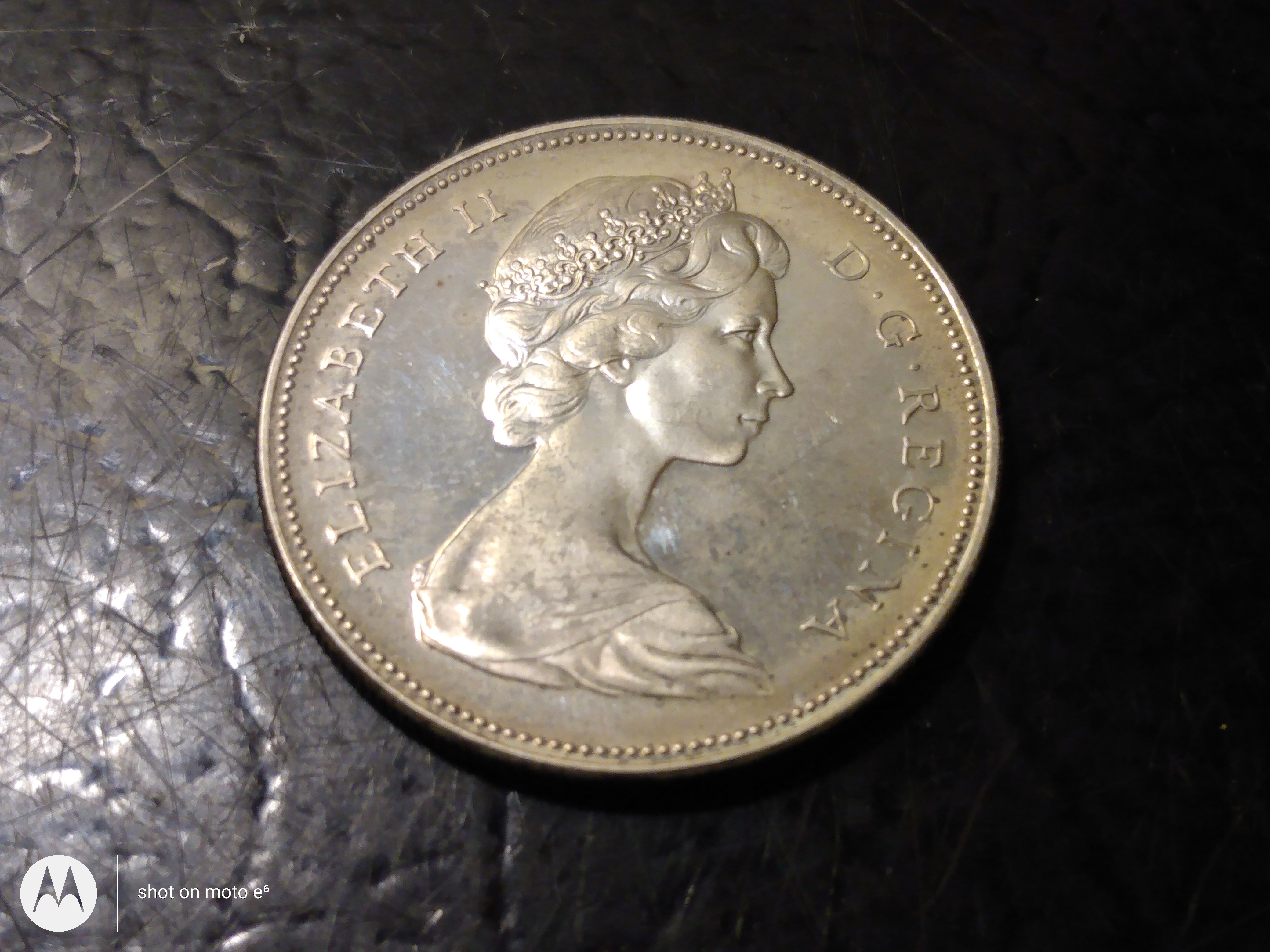 Canadian Silver Goose Dollar for Auction!!