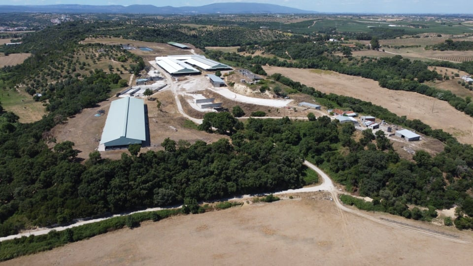 DAIRY FARM FOR SALE IN PORTUGAL